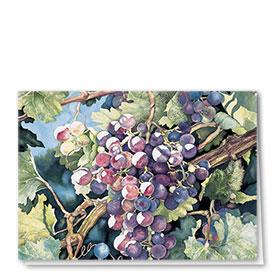 Full Color Multi Use Card-Fuschia