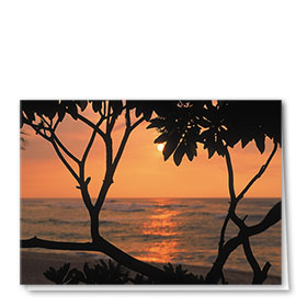 Full-Color Multi-Use Medical Greeting Cards - Sunset