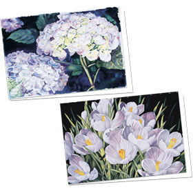 Full-Color Appointment Card Assortment-Crocus