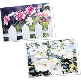 Full-Color Appointment Card Assortment-Hollyhocks & Cosmos