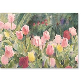 Standard Postcard-Tulip Garden