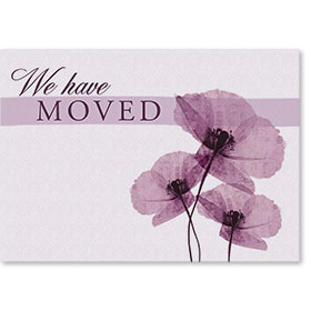 Standard Medical We've Moved Postcards - Purple Flowers