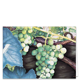 Fold-over Postcard-White Grapes