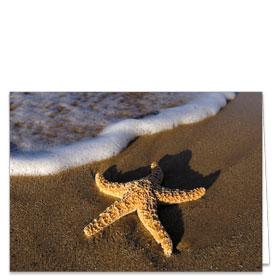 Fold-over Postcard-Starfish