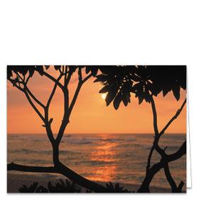 Fold-over Postcard-Sunset