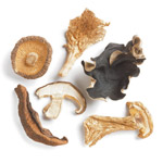 Forest Mushroom Blend