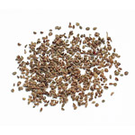 Celery Seed, Whole - Small (1.7 Oz.)