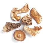 Special Mushroom Blend