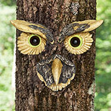 Owl Tree Face
