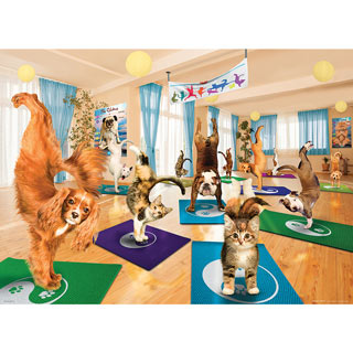 Yoga Studio 300 Large Piece Jigsaw Puzzle