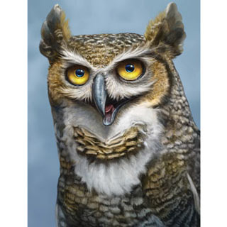 Happy Horned Owl 500 Piece Jigsaw Puzzle
