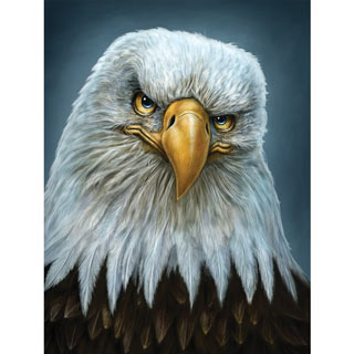 Earnest Eagle 500 Piece Jigsaw Puzzle