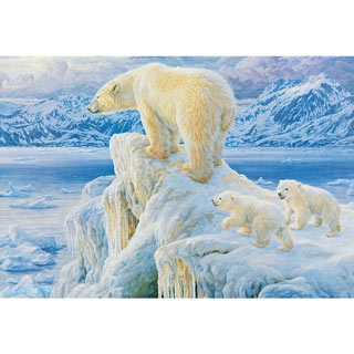 Ice Castle 500 Piece Jigsaw Puzzle