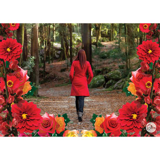 Forest Walk 1000 Piece Jigsaw Puzzle