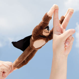 Amazing Flying Monkey