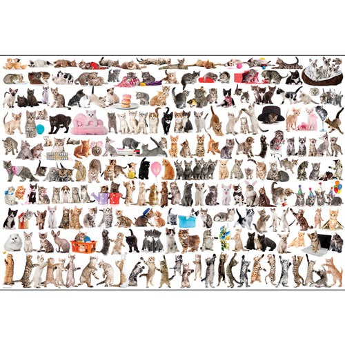 The World of Cats 2000 Piece Giant Jigsaw Puzzle