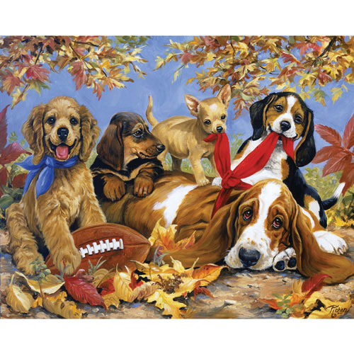 Let's Play Football 1000 Piece Jigsaw Puzzle