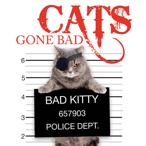 Pets Gone Bad Book - Cats