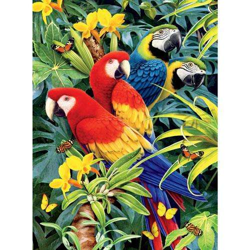 Majestic Macaws 1000 Piece Jigsaw Puzzle