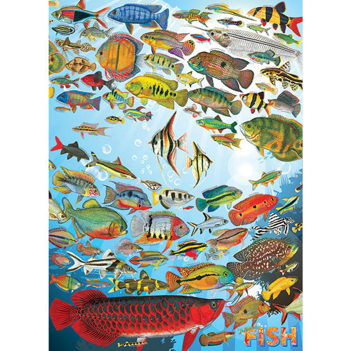 Tropical Fish 1000 Piece Jigsaw Puzzle