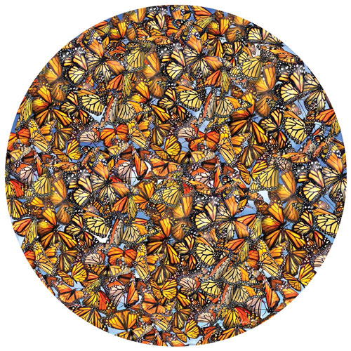 Monarch Frenzy 1000 Piece Round Jigsaw Puzzle