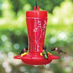 how to stop ants from climbing bird feeder pole