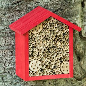 Bee Nesting House