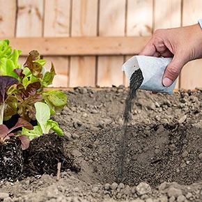 Gardens Alive Fuhgeddaboudit!