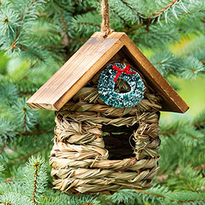 Feathered Friends Holiday Hideaway