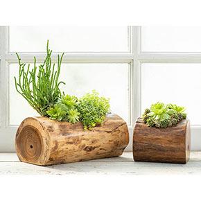 Natural Teak Planter