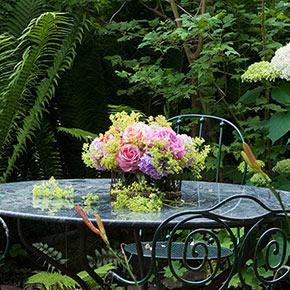 Rose & Ornamental Plant Spray RTU