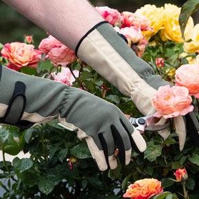 Spring Hill Gauntlet Gloves