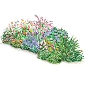 3 Season Perennial Garden Plans