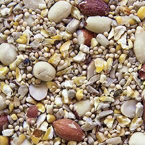 No-Waste Birdseed – 1lb Trial Size