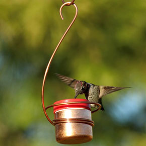 Copper Hummingbird Bee Resistant Hanging Feeder