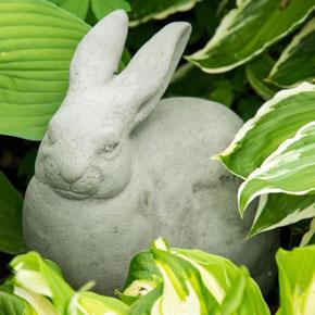 Vintage Jessie Rabbit