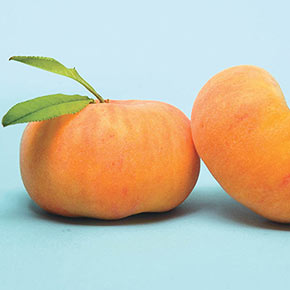 Flat Wonderful™ Peach