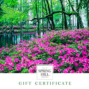 Gift certificates for sale at spring hill nurseries quick viewopens a dialog e gift certificate landscape design mightylinksfo