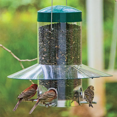 Sheltered Songbird Feeder