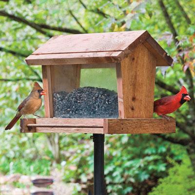 Backyard Basics™ Hopper Feeder