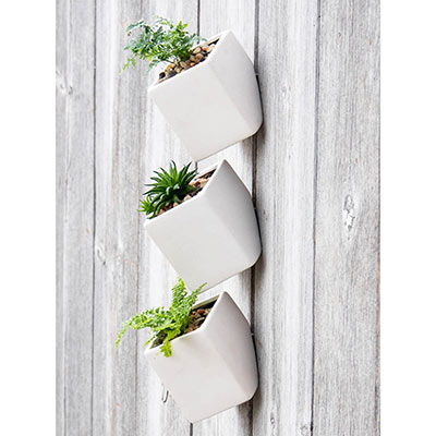 Spring Hill Nurseries Hanging Wall Cube Planter
