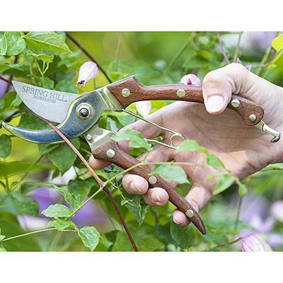 Rosewood Pruner