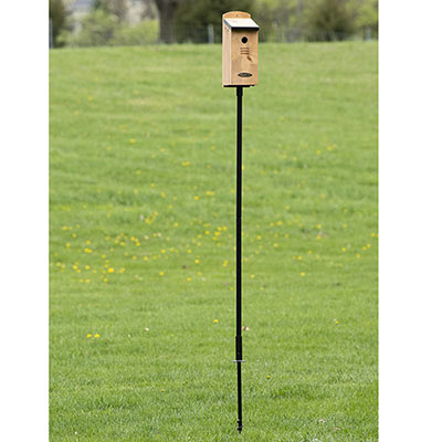 Ground Anchored Steel Pole