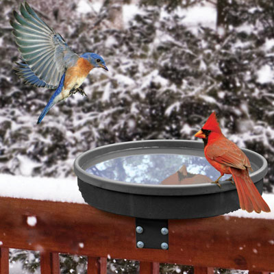 Songbird Spa Heated Birdbath