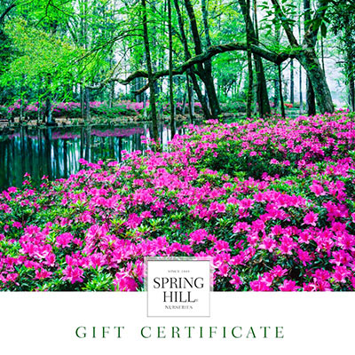 E gift certificate landscape design spring hill nurseries for Spring hill nursery garden designs