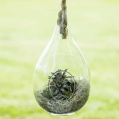 Elliptical Hanging Planter