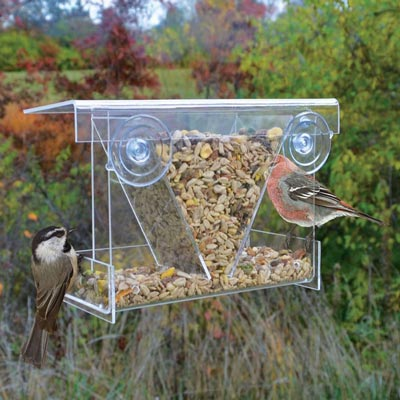Clear View Feeder
