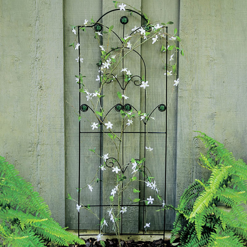 Trellis for Small Climbers