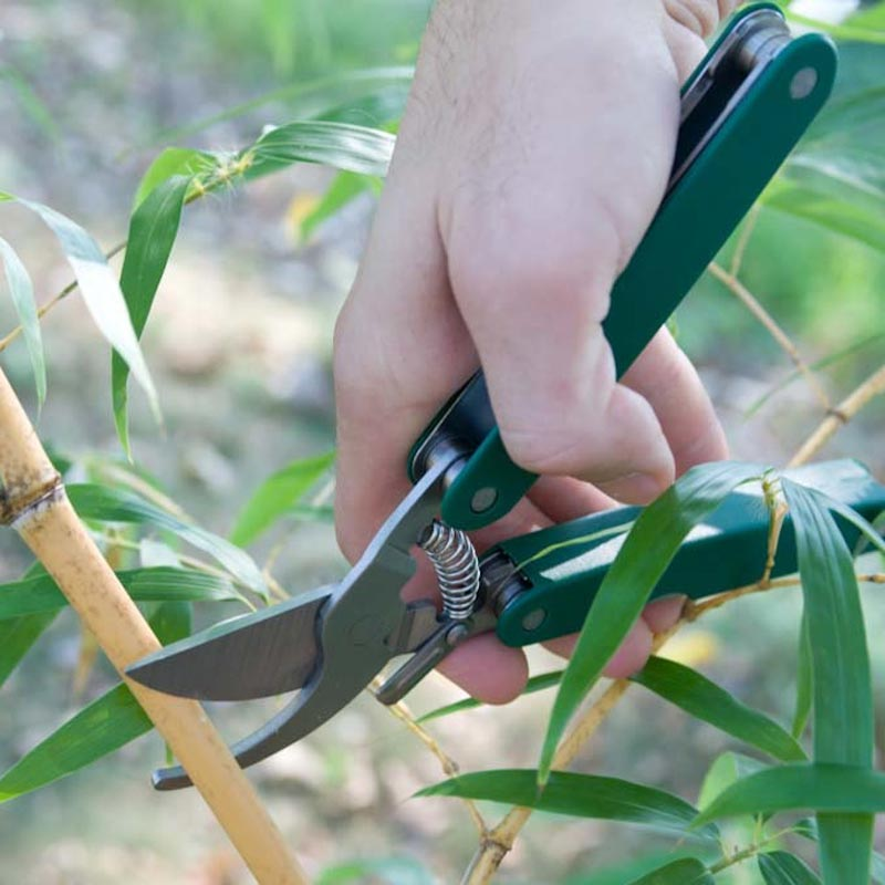 6-in-1 Pruner Multi-Tool