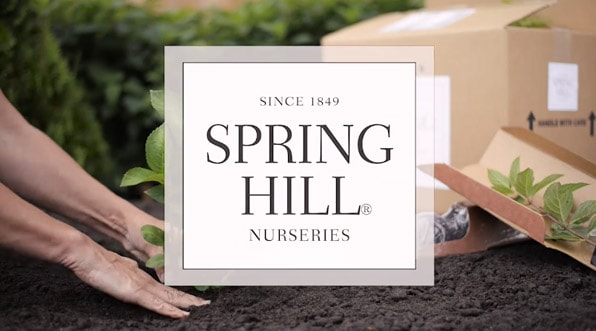 The Spring Hill Nurseries<sup>®</sup> Difference